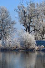 winter wasser bild